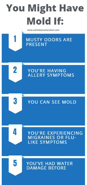 mold removal is necessary when these mold symptoms are present